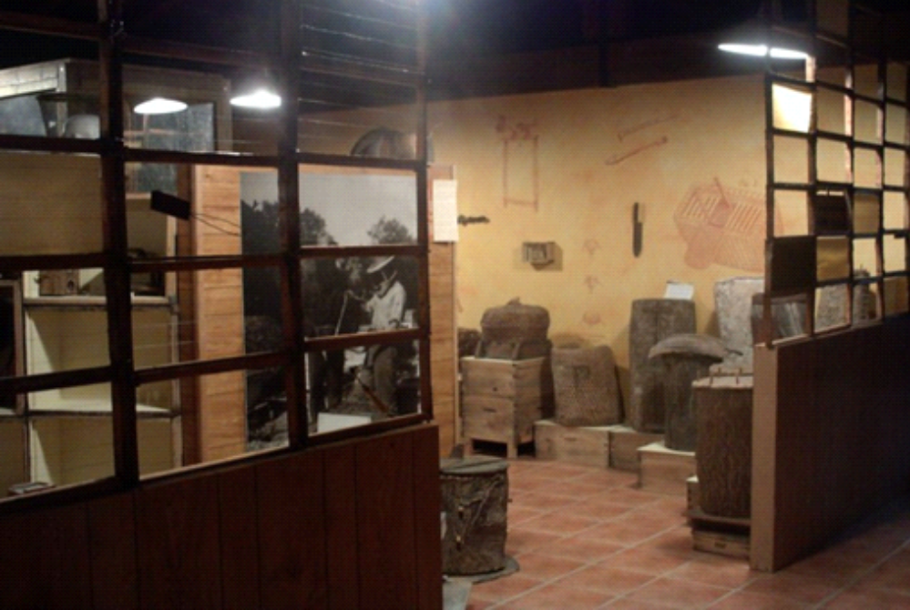 aula museo de apicultura