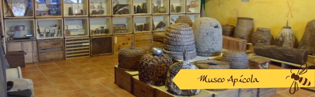 museo apicola