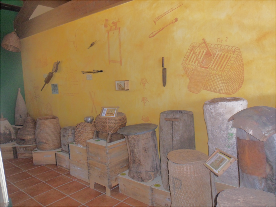 Museo de Apicultura del Aula Apícola Sierra de Hoyo
