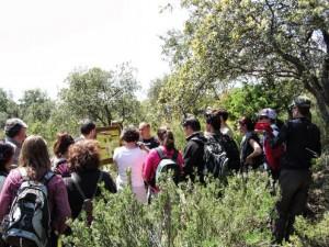 Testing de Biodiversidad