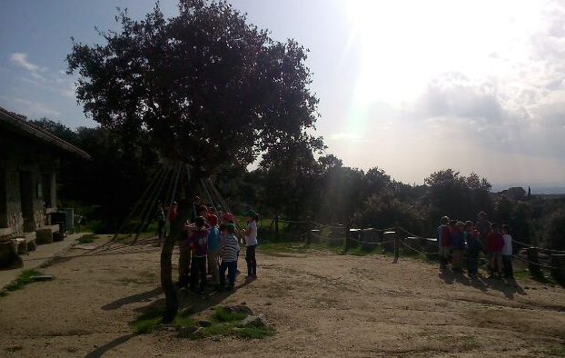 Actividades para colegios. Formando grupos al inicio de la jornada
