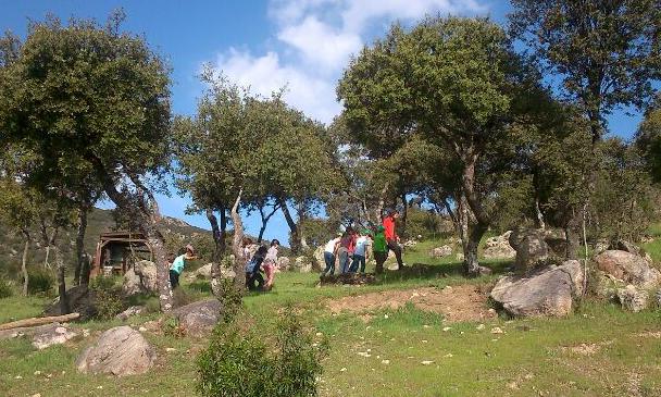 visitas para colegios : senda temática del Aula Apícola Sierra de Hoyo