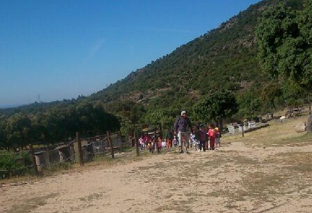 Actividades para colegios: visita del CP Miguel de Cervantes de Collado Villalba al Aula Apícola Sierra de Hoyo