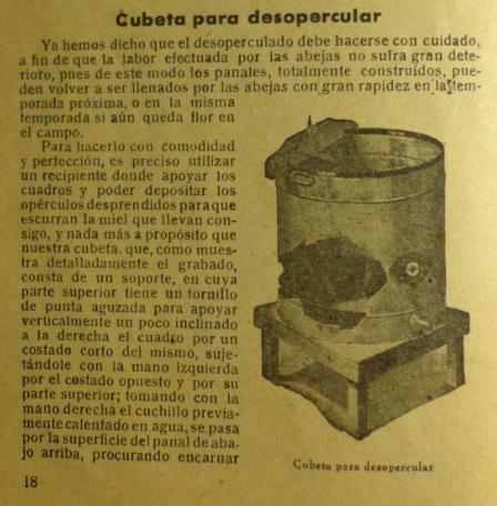 Cubeta desopercular Moderna Apicultura