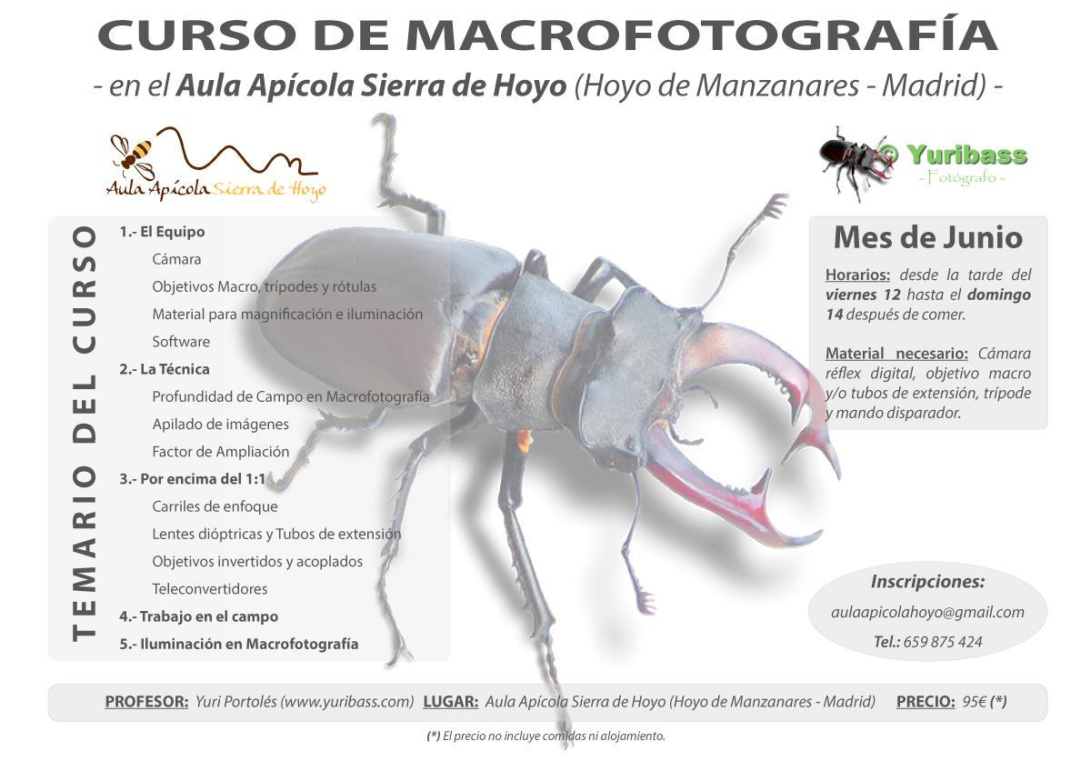 Curso de fotograf a con macro educaci n ambiental madrid for Curso de escaparatismo madrid