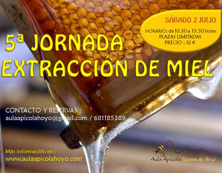 5ª jornada extracción miel