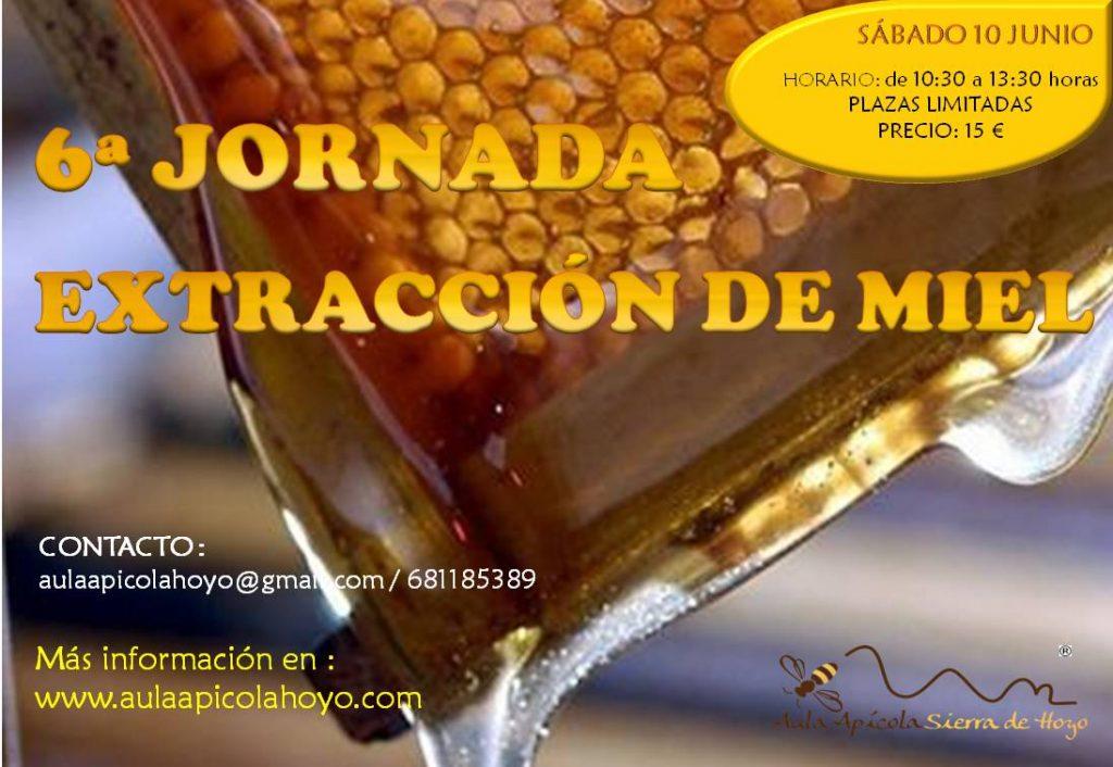 6ª jornada de extracción de miel