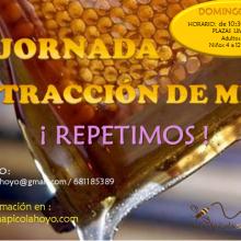 Nueva jornada de extracción de miel