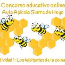 Concurso Apícola. Ficha 1