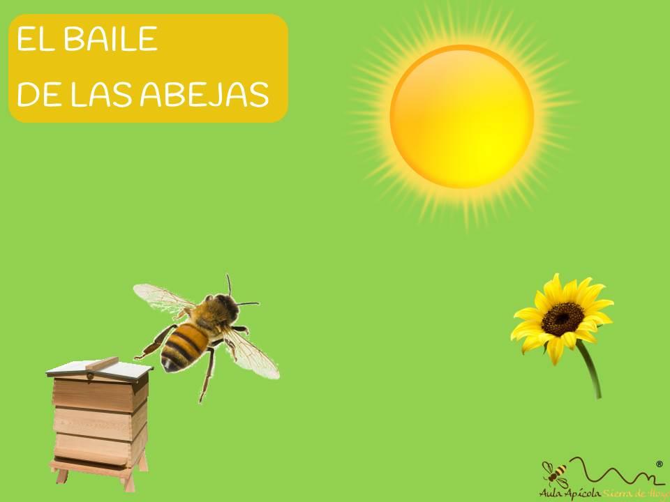 Comunicación de las abejas