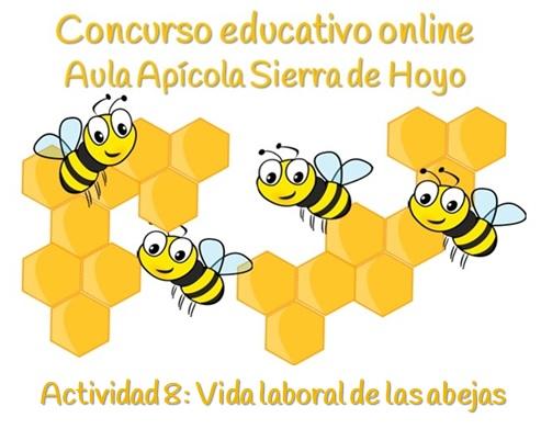 Vida laboral de las abejas