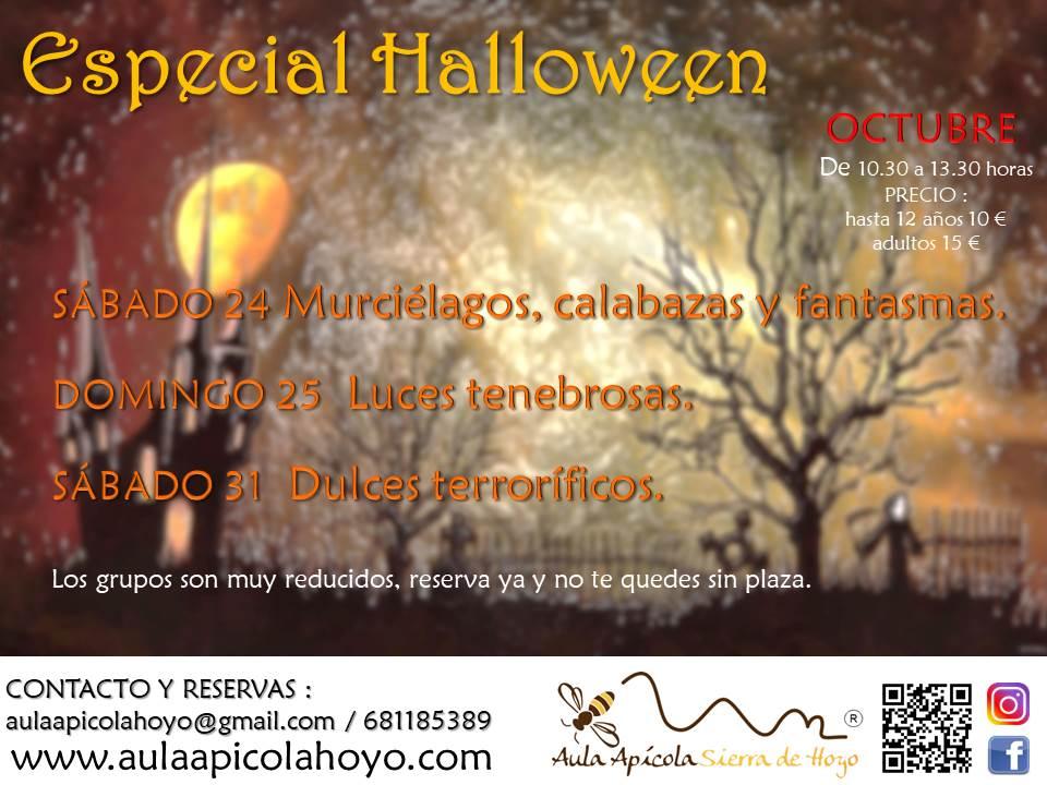 Talleres Halloween