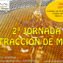 Productos de las abejas: Jornada de extracción de miel