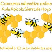 Concurso Apícola. Ficha 3